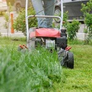Gardener cutting grass with lawnmower