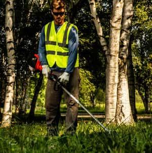 Landscaper using weed trimmer