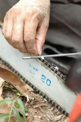Man sharpening chainsaw teeth